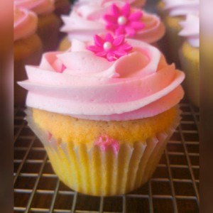 Girly Girl Pink Cupcake